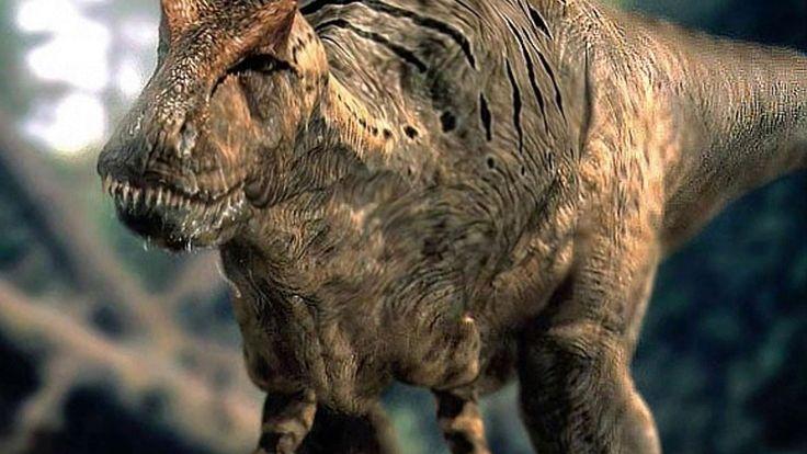 5 Dinozaurów, które występowały W POLSCE!