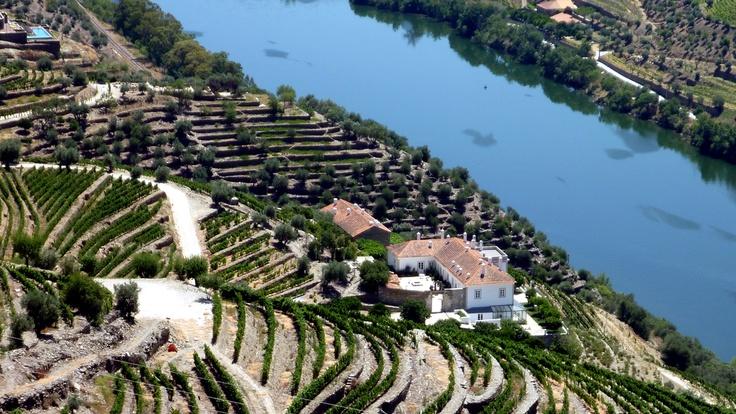Quinta da Romaneira, Douro Valley, Portugal