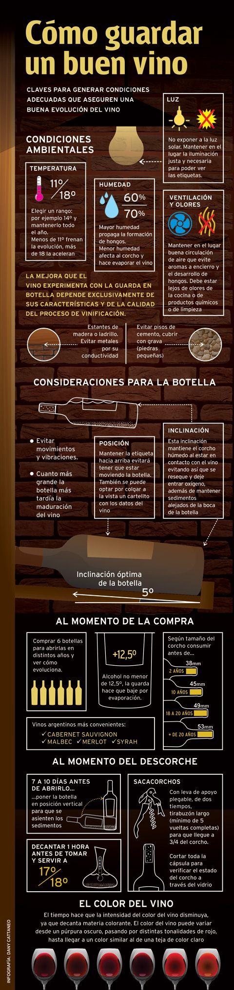 ¿Cómo guardar un buen vino? - Area del Vino #infografía #vino