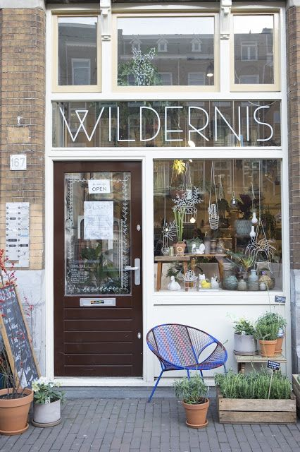 5 adresses food à Amsterdam. wildernis cute green shop, plants store and coffee…