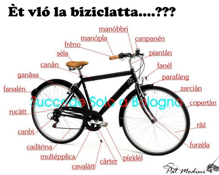 Bike in Bolognese dialect.   www.succedesoloabologna.it
