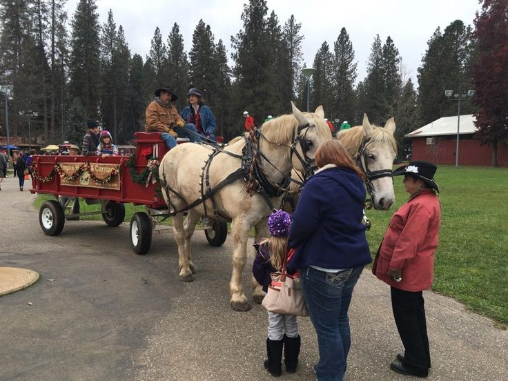 Nevada County Fairgrounds Country Christmas Faire, Friday/Saturday/Sunday, November 24-26 #GrassValley