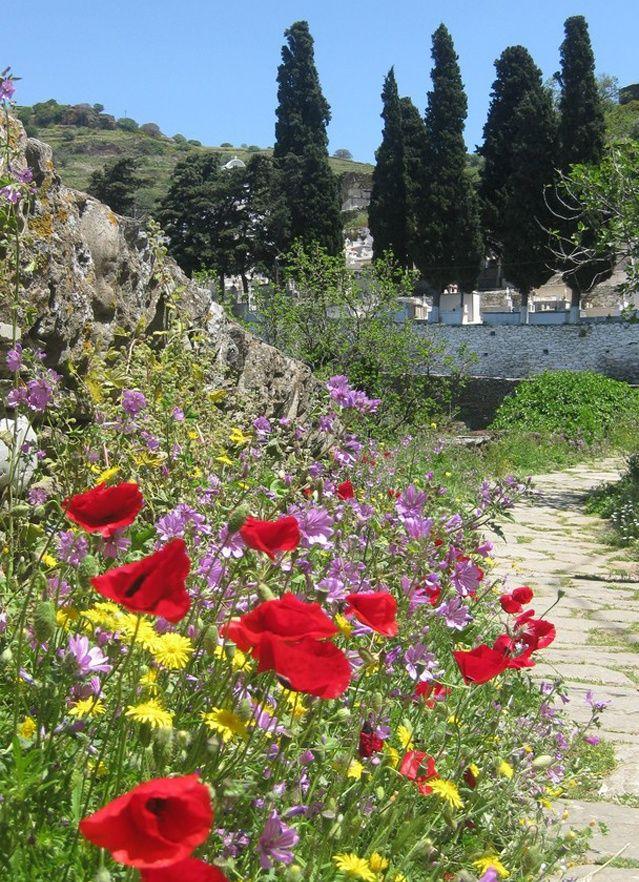 TRAVEL'IN GREECE | Spring in Kea, #South_Aegean, #Greece,  #travelingreece