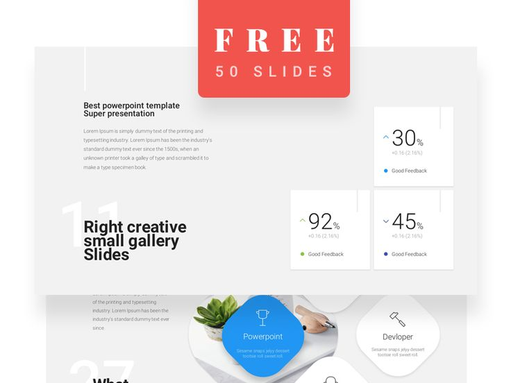 Free 50-Slide Materialo Powerpoint Template