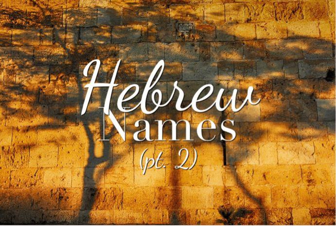 Best 25 Hebrew Names Ideas On Pinterest Hebrew Baby