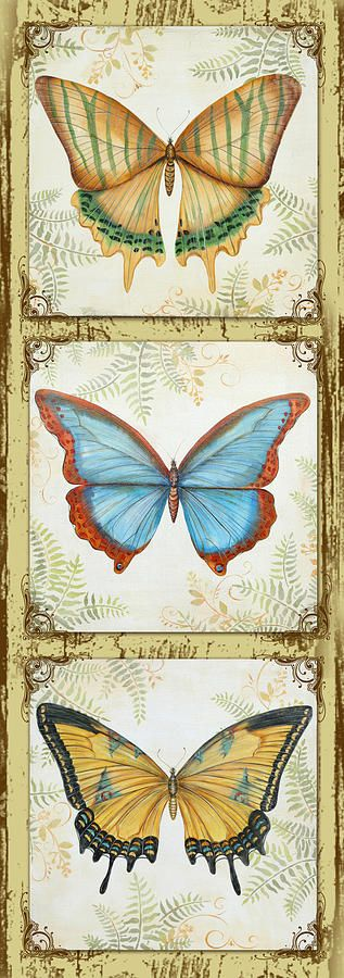 Butterfly Trio-2 Painting - Butterfly Trio-2 Fine Art Print