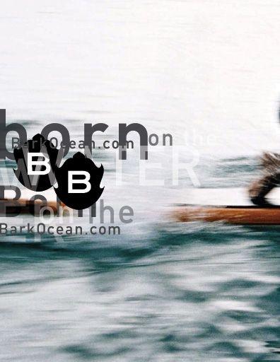 David Carson designed this Bark paddle boards brochure.