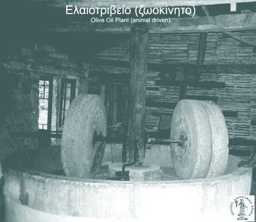 #Achaia, #Aigialeia, #Animal driven olive mill