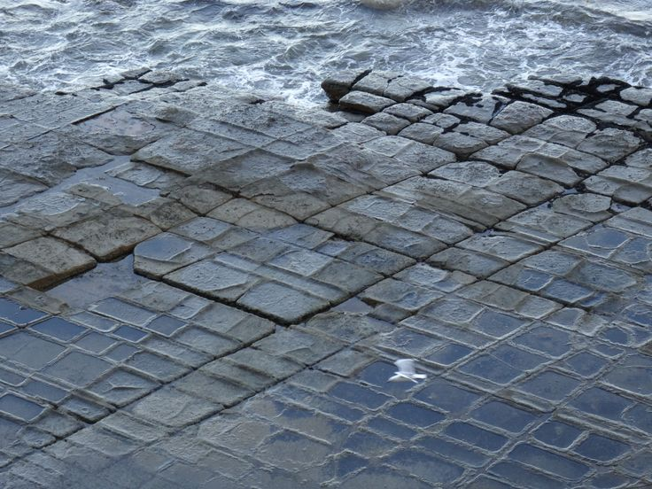 Tessellated Pavement - a fascinating naturally occurring beach.  The rocks have cracked and resemble tiles.