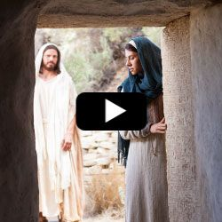 Follow the Life of Jesus by Video from Birth to Resurrection
