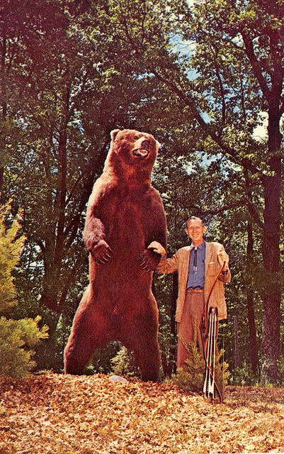 Michigan Ourtdoor's Archer Fred Bear w 1000lb Bow and Arrow taken Alaskan Brown Bear 1960
