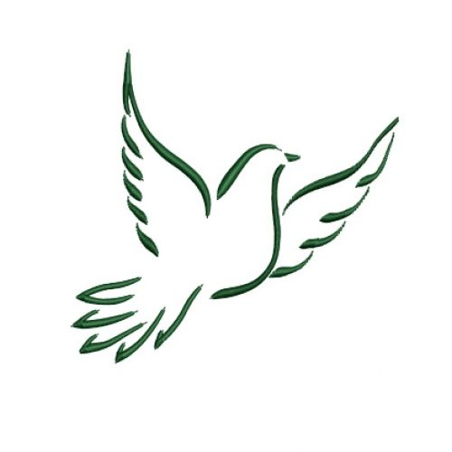 Best 25 Dove pictures ideas on Pinterest Holy spirit images