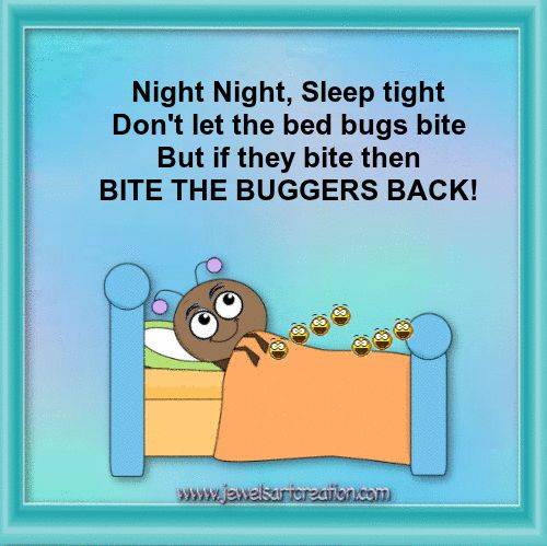 good night comments, fun good night, bed bugs, cute animation, funny good night, good night quotes