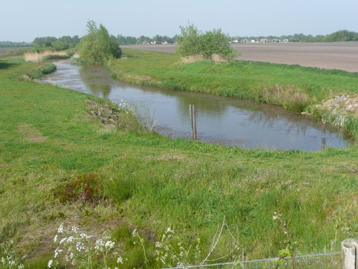De Runde vlakbij Zwartemeer