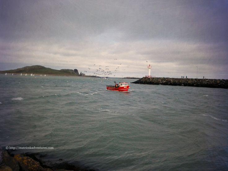 Howth Dublino Irlanda http://matrioskadventures.com/2014/04/07/incontro-ravvicinato-con-foche-nel-pittoresco-villaggio-di-howth-dublino/