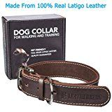 Leatherberg Leather Dog Collar Large  Dark Brown  Real Leather Pet Trainer Collar (Large)
