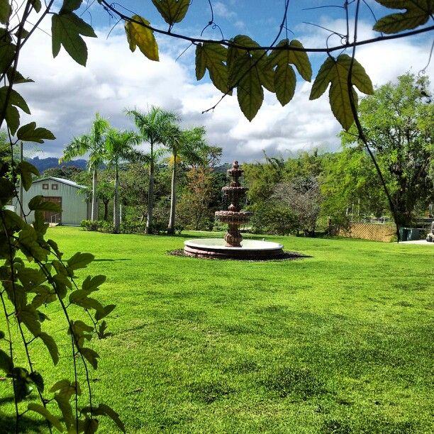 Jardin botanico caguas pr paisajes puerto rico pinterest for Bodas jardin botanico caguas