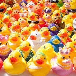 Mega Rubber Duck Assortment by Century Novelty, http://www.amazon.com/dp/B003H9QGJ0/ref=cm_sw_r_pi_dp_AgwPrb0WM700C