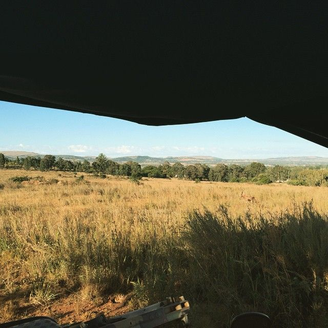 Views across the reserve & Eikenhof koppies from our sunrise Eco drive #ThabaEco