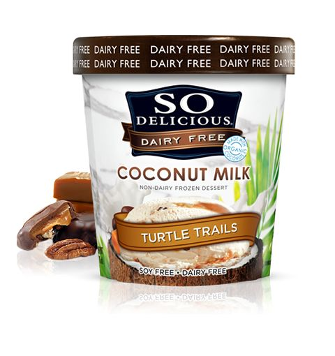 Turtle Trails--This stuff is amazing!  Your dairy-free kids will never feel sorry for not having ice cream again!