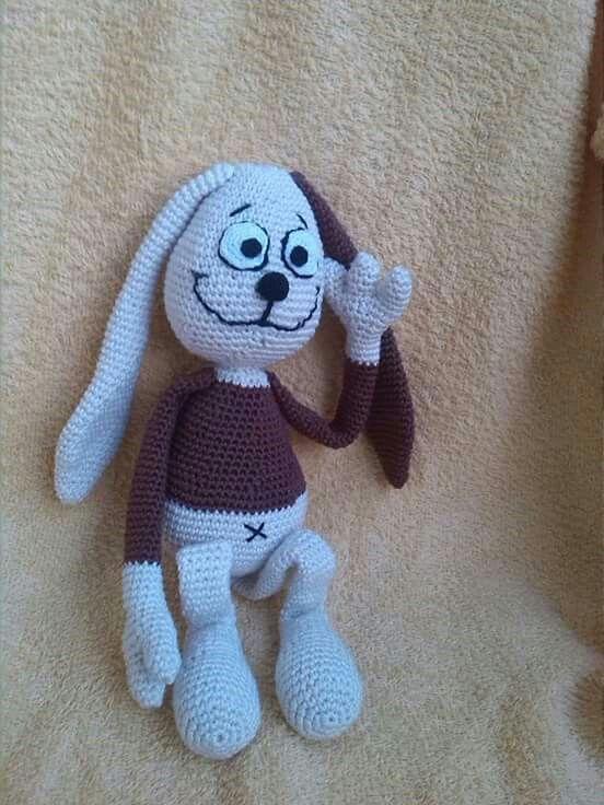Zajíc králík