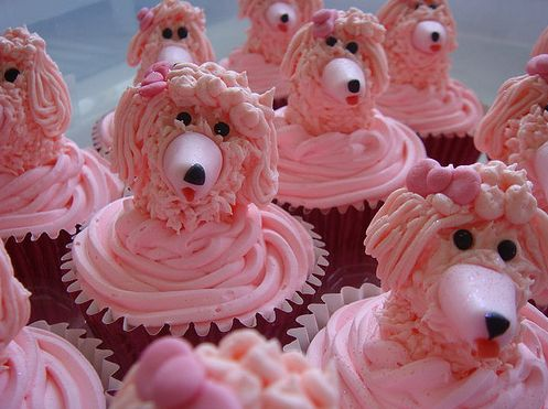 Pink Poodle Cupcakes, how can you not love  a pink poodle!  Especially for a french party?  ooh la la?