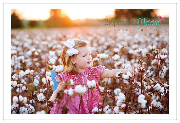 I have to take a picture in a cotton field!