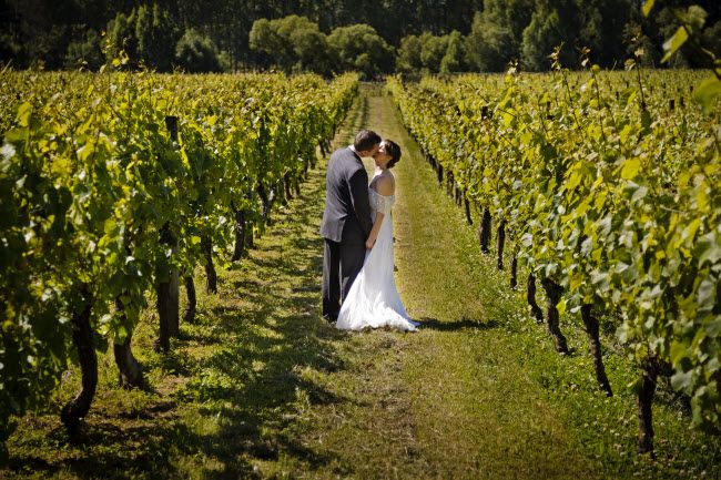 New Zealand is well known for its wines and now you have the opportunity to get married amongst the vines.  New Zealand Wedding Packages will take you to a vineyard, provide a personalised wedding ceremony followed by a romantic lunch and wine in the idyllic surroundings of the vineyard.