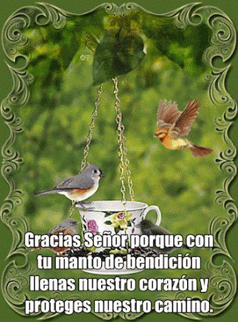 Hermosas tarjetas animadas con movimiento - Frases de Gracias a Dios por sus Bendiciones | Meditaciones - Reflexiones -Tarjetas - Postales - Videos