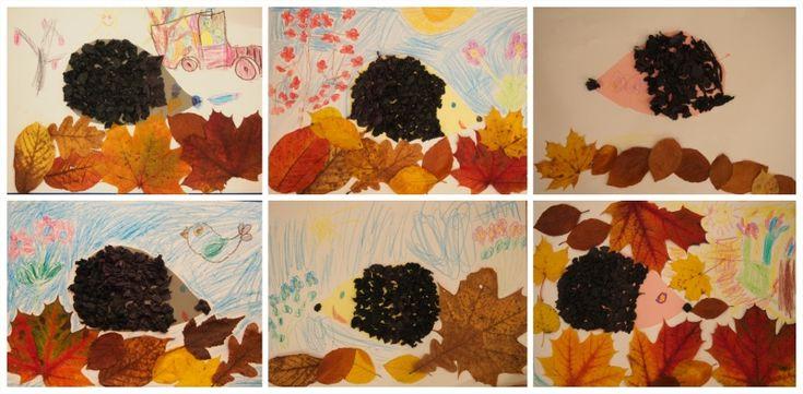 podzimní ježci - autumn hedgehogs