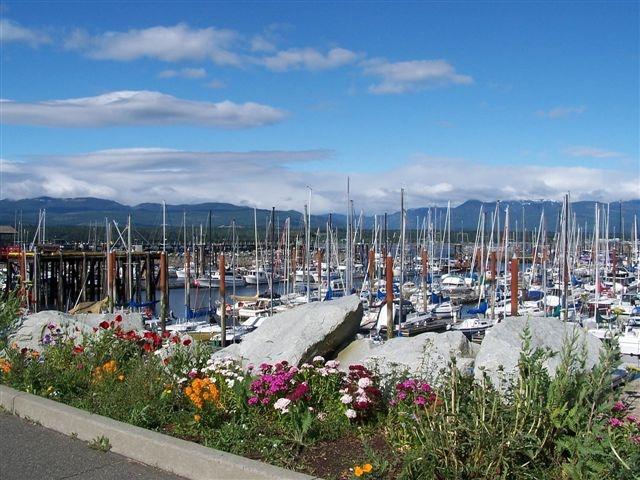 Comox Harbor and Marina
