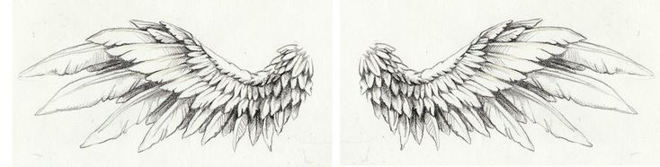 wing tattoo art for a friend