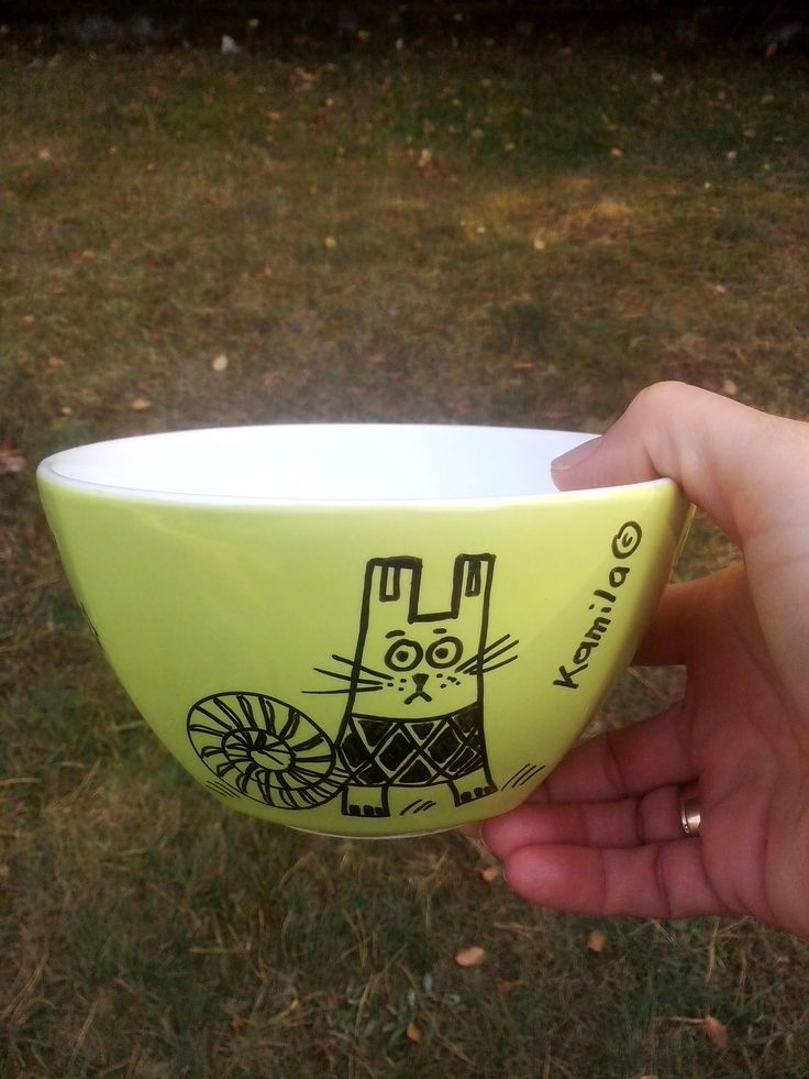A bowl with cat