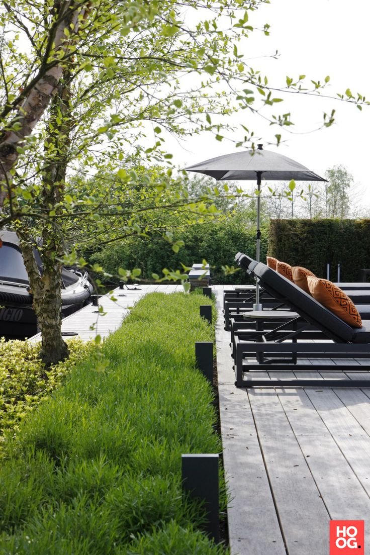 Luxe ligbedden bij rechthoekig zwembad | tuin ideeen | tuin ontwerp | luxury garden design | Hoog.design