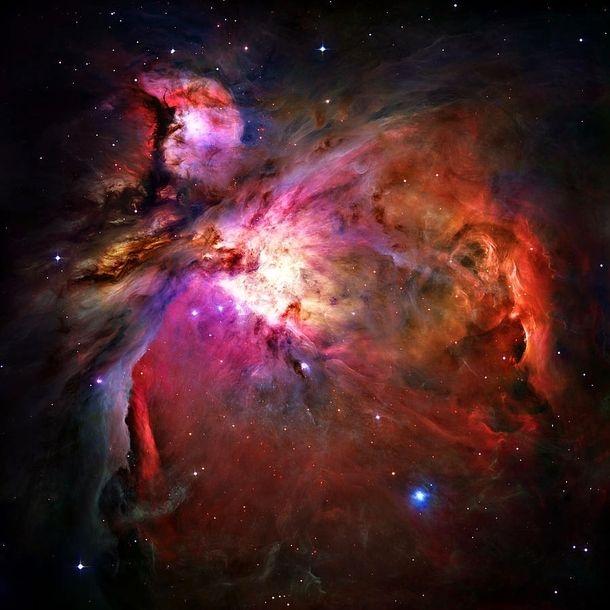 Orion Nebula  X  #space #orion #nebula