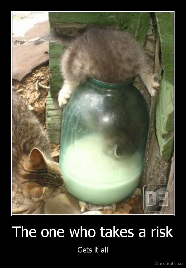 Gotta have it.: Random Pictures, Cauldron, Cat, Funny Pics, Pet Memories, Milk Bottle, Funny Photo, Kitty, Animal