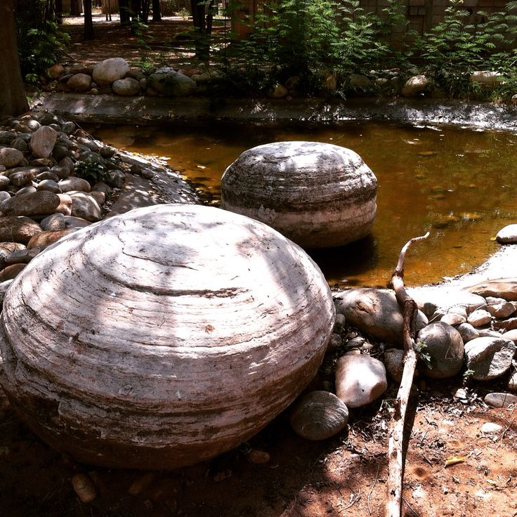 veo_veo, piedras volcánicas Jardín Botanico en Maracaibo, Venezuela