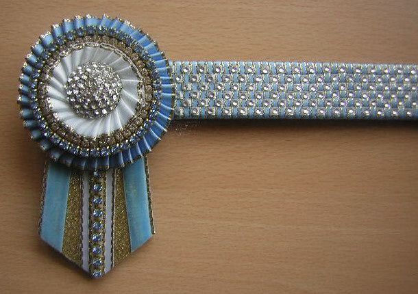 SHOW STOPPERS BROWBANDS |