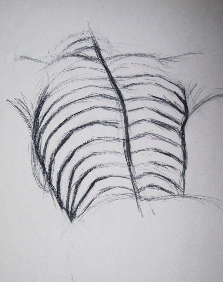 Contour Line Drawing Pumpkin : Best cross contour line drawings images on pinterest