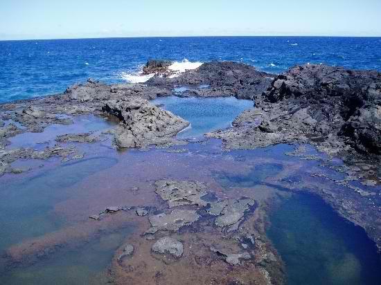 Olivine Pools - West Maui, Hawaii
