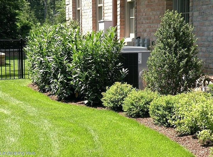 14 Ways To Make Your Yard Look Superior For Underneath a