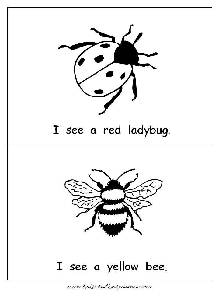 I is for Insect easy reader and LOTS of other insect printables