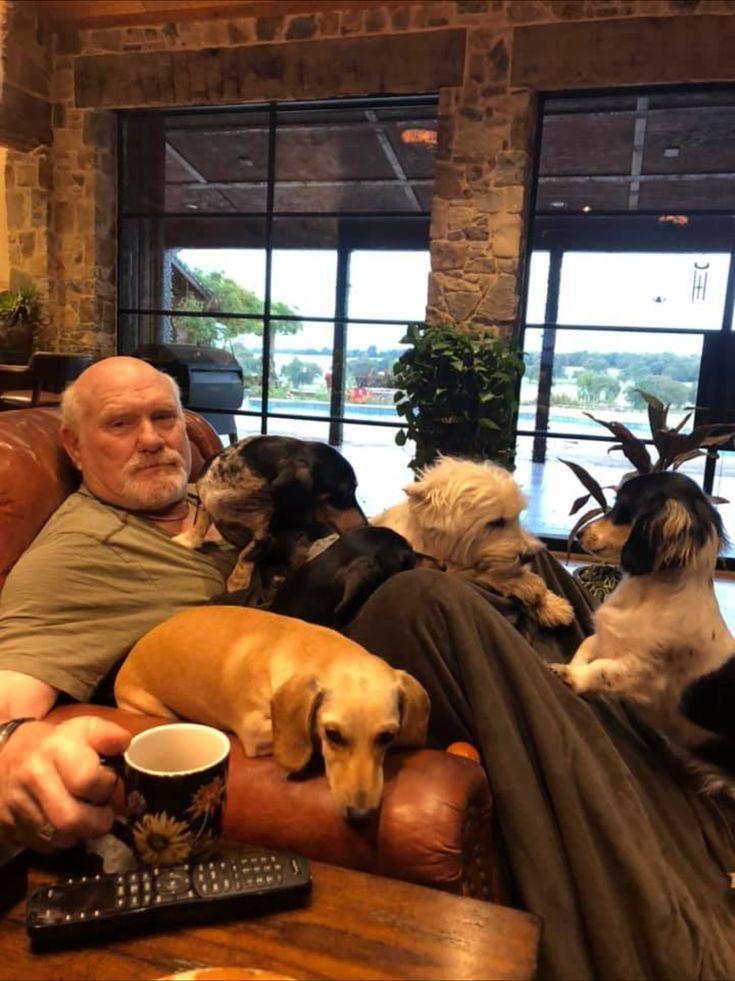 terry bradshaw_Terry Bradshaw, at home ️ | Dachshund, Labrador retriever, Labrador