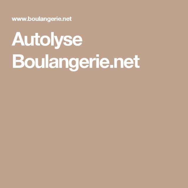 Autolyse Boulangerie.net