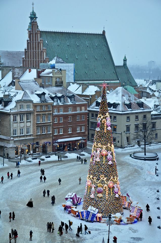 Christmas in Warsaw, Poland - I love the brightness of the tree in contrast with the cold, snowy surroundings.