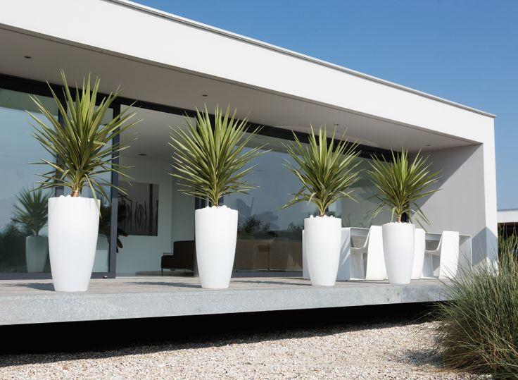 Strakke tuin met moderne witte potten #garden