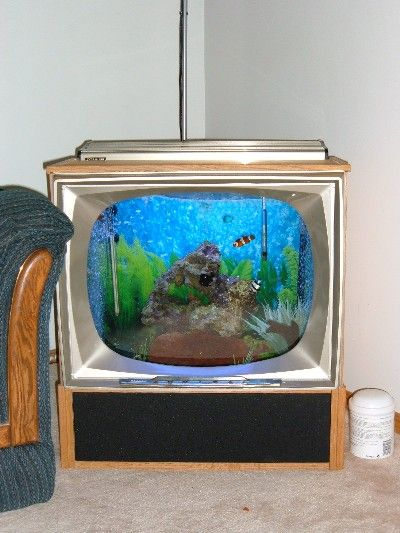Constructed DIY (Do It Yourself) Projects: Joey's 45g TV Reef Tank