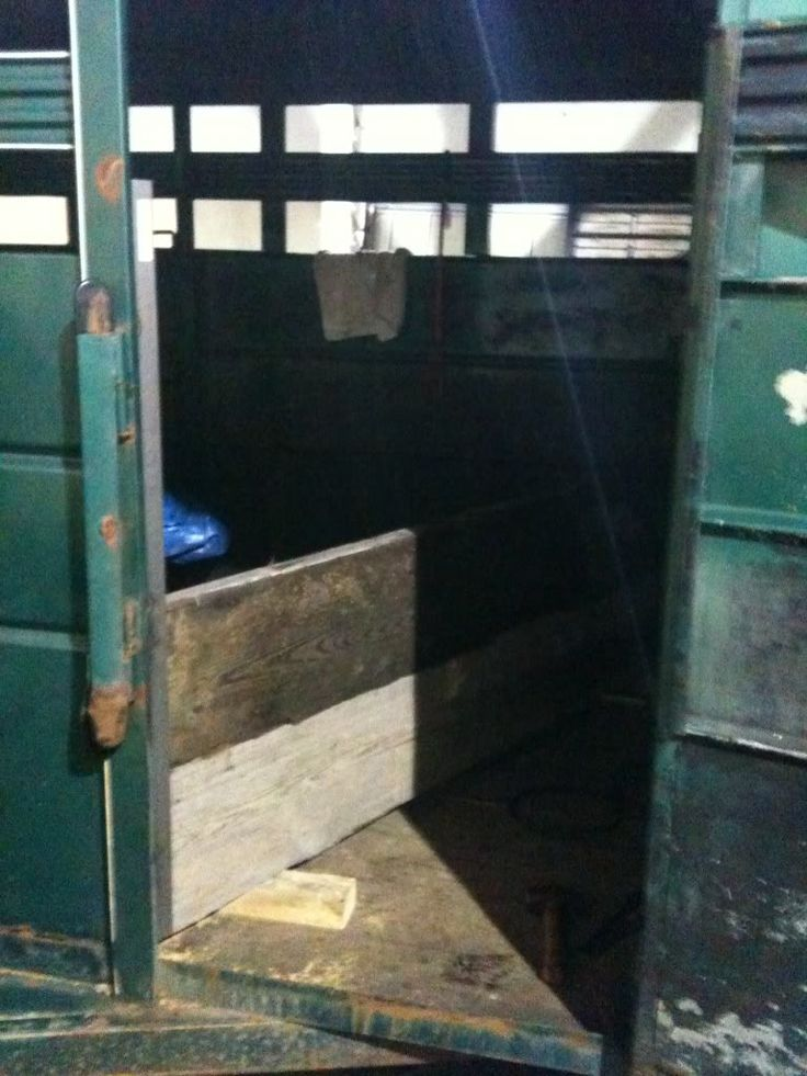 Stock trailer tack room build | tack room for show | Stock ...