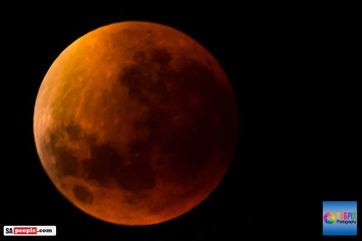 Awesome Photos of the Supermoon Lunar Eclipse from South Africa - SAPeople - Your Worldwide South African Community