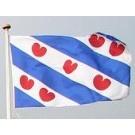 Frisian flag | Friesland vlag | Friese vlag webshop